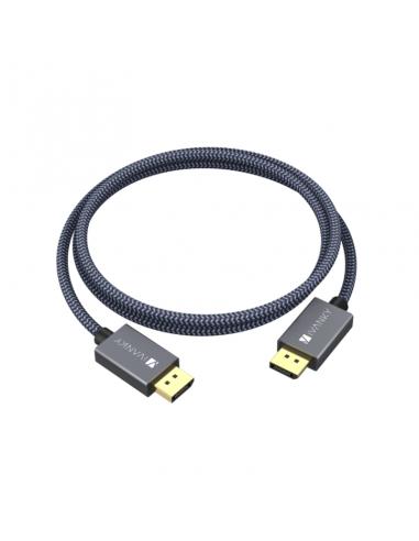 Câble DisplayPort vers DisplayPort 2m